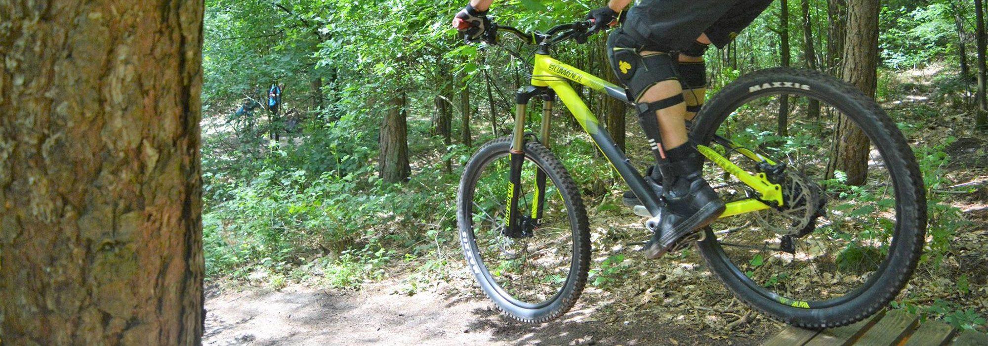 mtbclinic.nl mountainbike clinics freeride